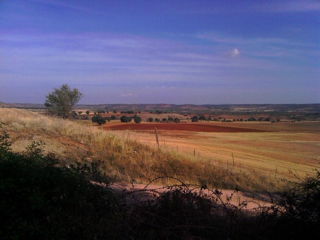 Paisaje del Campo de Montiel