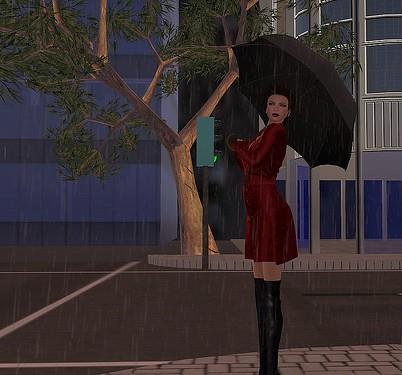 Rainy Day Reds