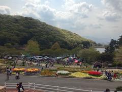 今日は和歌山ガネ福一のイベントでライブです!