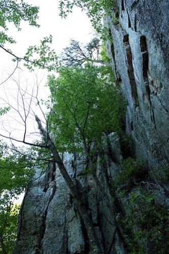 20130526_Seneca_Rocks_071