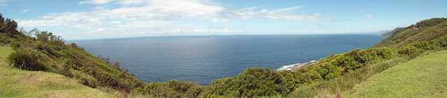 View Towards the Sea Cliff Bridge