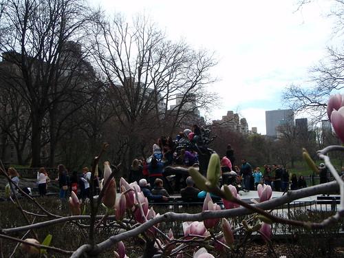 blossoms framing Alice in Wonderland sculpture