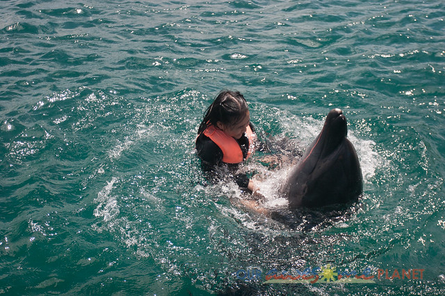 Swim Encounter with Dolphin-99.jpg