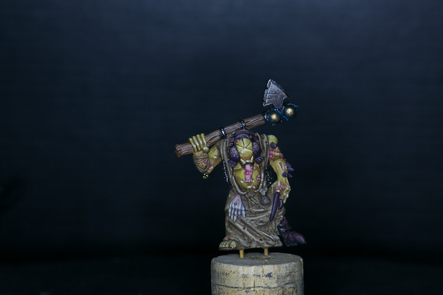 Old Champion of Nurgle 002.jpg