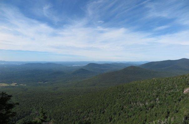 Blueberry Ledge Trail View