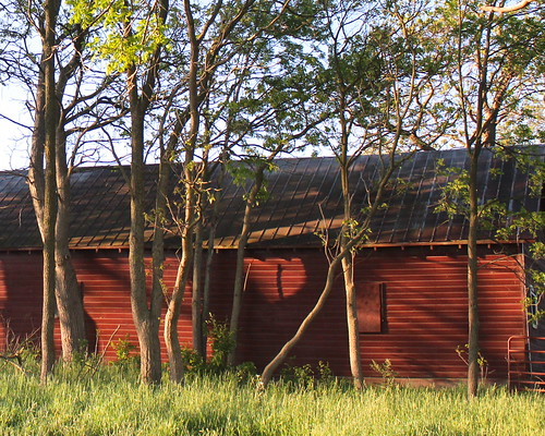 Red Barn with Trees