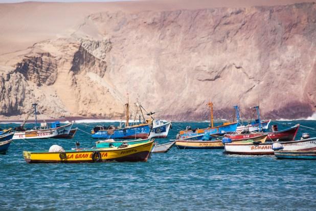 Paseo por Paracas