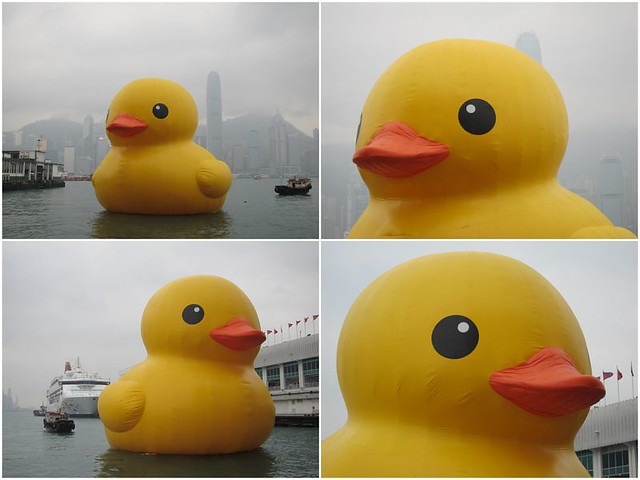 RubberDuckProject