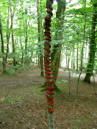 Sapling helix