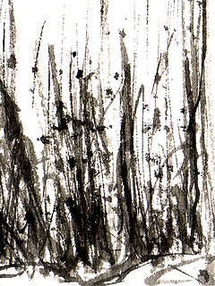 Stillman & Birn Alpha Sketchbook Grass Detail