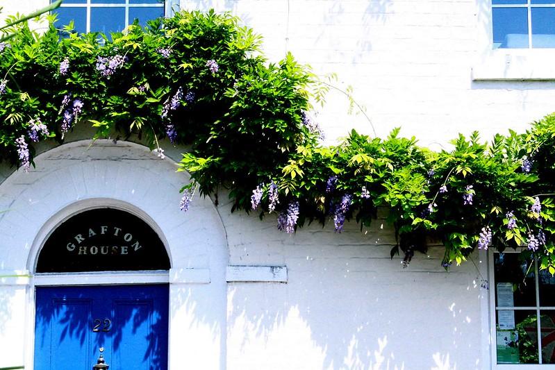 Grafton house, cambridge