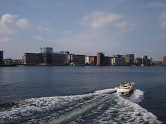Harbour Pools, Sunny Summer Days in Copenhagen