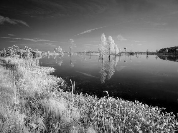 Early morning reflections (IR B&W)