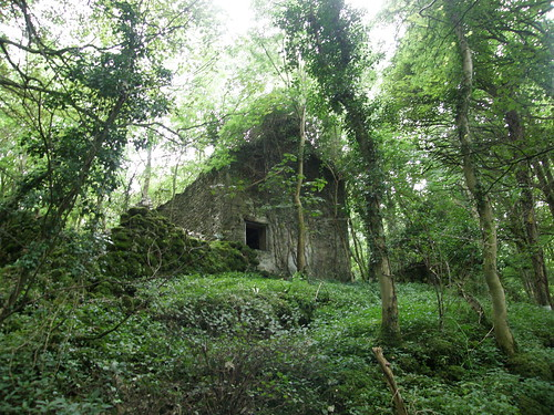 Ruined house