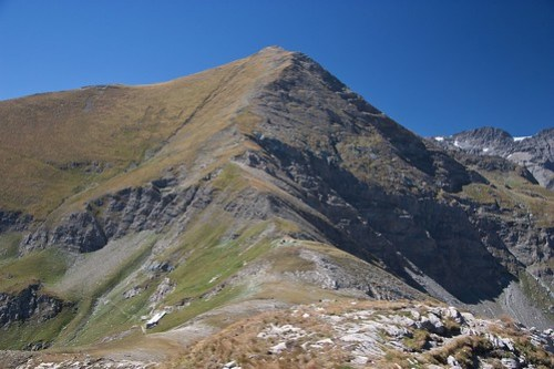 Monte Palon