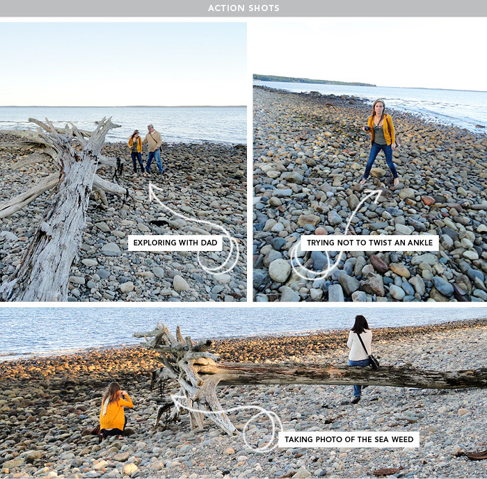 Penobscot Bay Driftwood Lincolnville Maine Action Shots