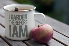 I garden therefore I am :-)