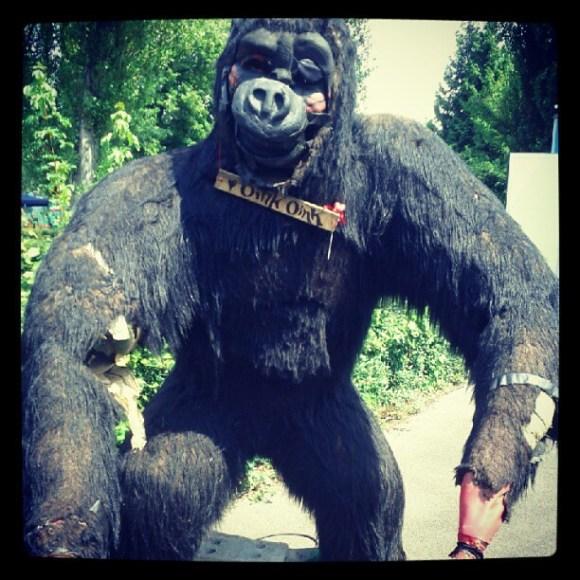 Broken gorilla
