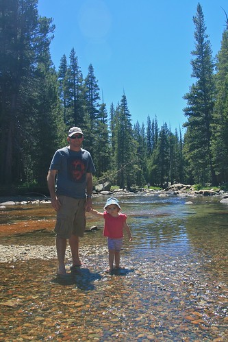 Playing in a creek in Yosemite National Park