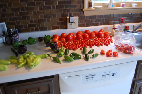 Tomatoes and peppers sorted by size and type