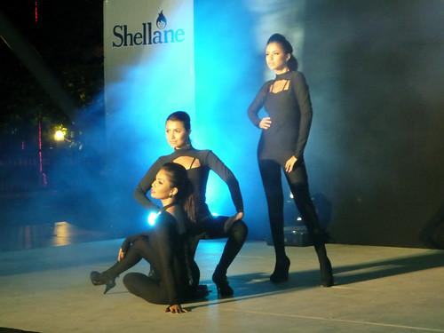Shellane 2011-0614 010