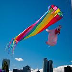 Rainbow and Pig Windsocks