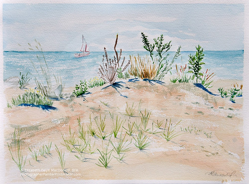 Cedar Beach en Plein Air by photographerpainterprintmaker