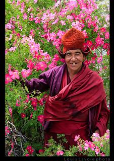 Le moine et les fleurs