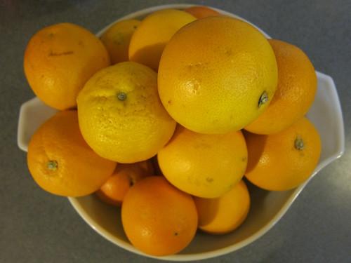 Pre-Juiced Oranges