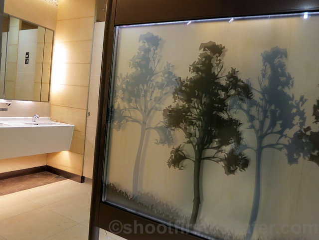 Taiwan Taoyuan International Airport's restroom-002