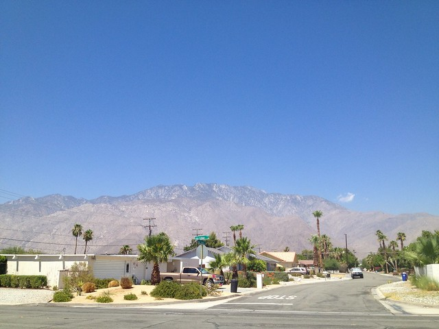 Typical Palm Springs neighborhood