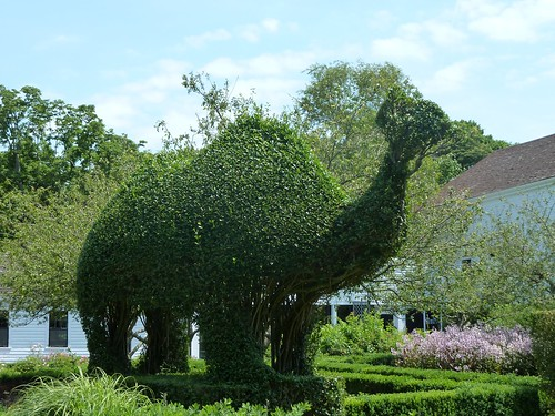 Topiary Dinosaur