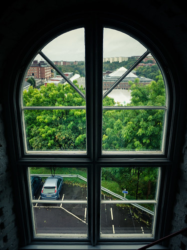265/366 - Through the window by Flubie