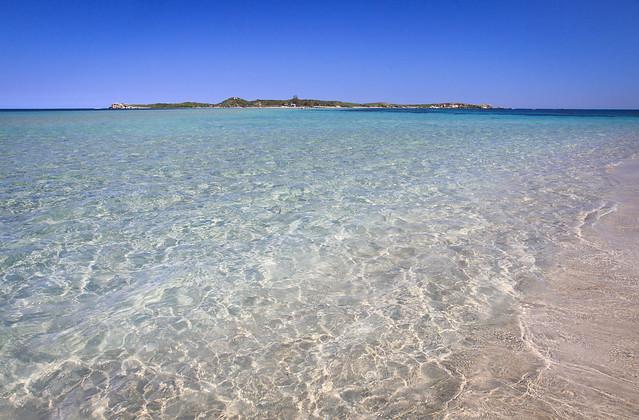 Penguin Island Rockingham, Western Australia