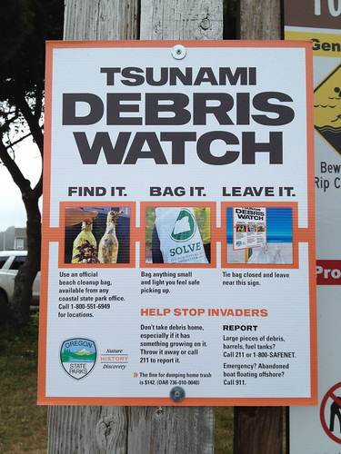 Tsunami Debri Watch Sign by DRheins