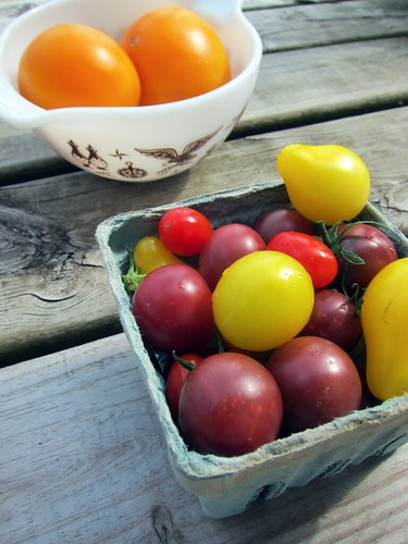 "<a href=""http://www.flickr.com/photos/37675965@N02/7924803342/"" title=""Farmer's Market Tomatoes by keddylee, on Flickr""><img src=""https://i0.wp.com/farm9.staticflickr.com/8442/7924803342_4dbb078a7f.jpg"" width=""375"" height=""500"" alt=""Farmer's Market Tomatoes""></a>"