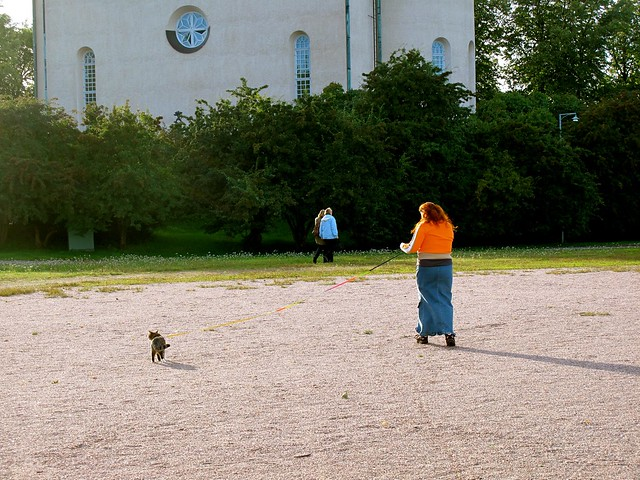 finns taken their cat for a walk in the park...