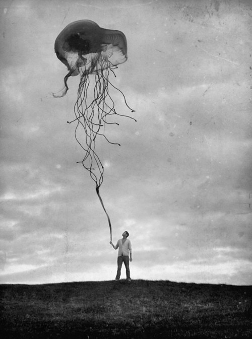 Jellyfish baloon