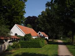 Assistens Cemetery. Sunny Summer Days in Copenhagen