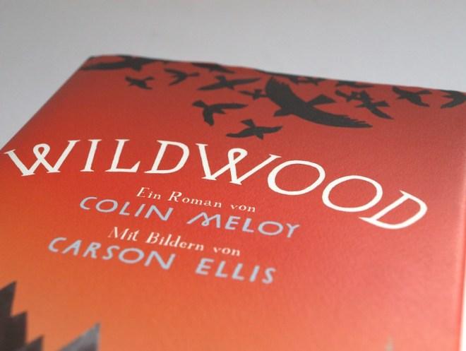 wildwood (3)