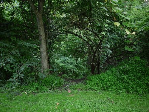 another hidden entrance