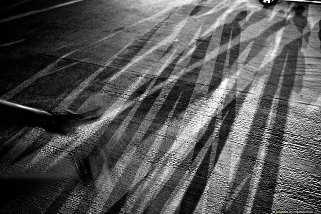 colleagues in shadow