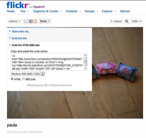 flickr_código_html