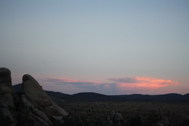 Sunset over Joshua Tree