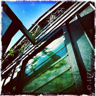 Shed some light #iphoneography #imagery #backyard #instamood