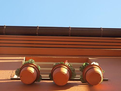 Potteplanter i Oslo
