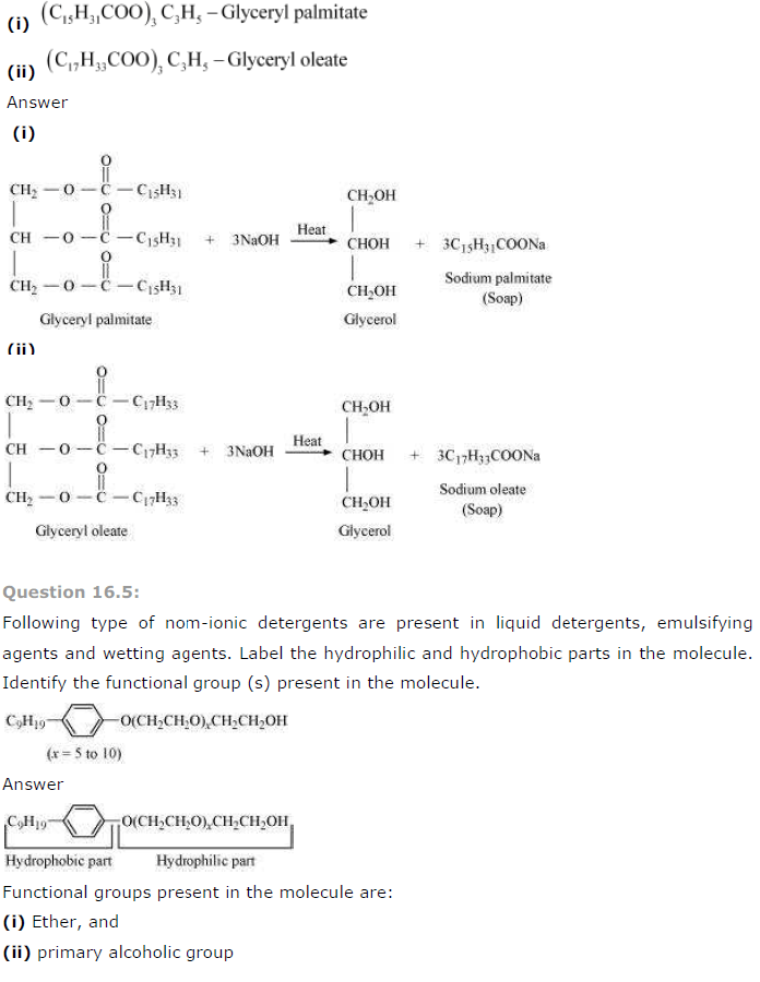 NCERT Solutions for Class 12th Chemistry