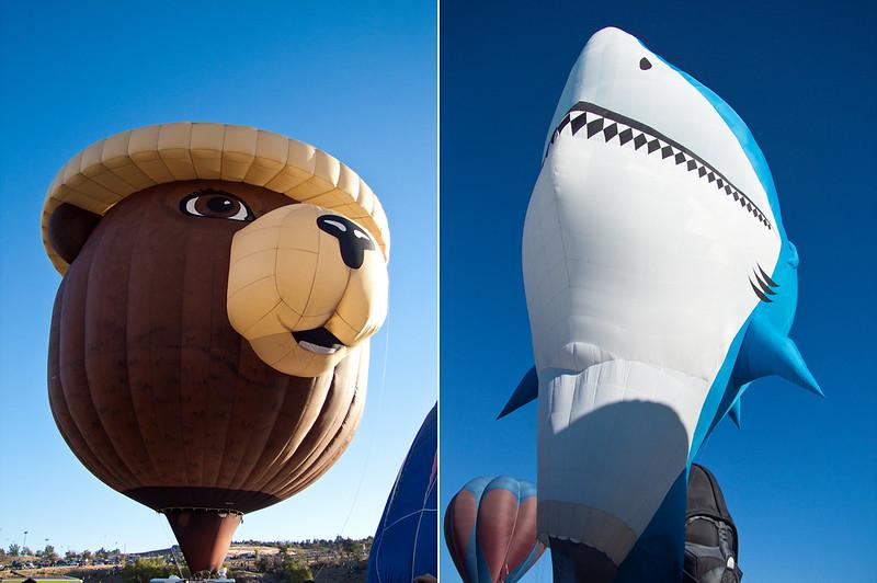 Smoky bear and great white shark balloon. Great Reno Balloon Race