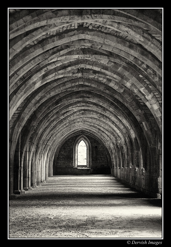 Cellarium - Fountains Abbey