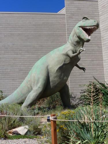 9-3-12 UT - Dinosaur National Monument 23